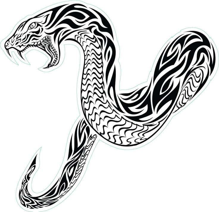 736x712 Best Tribal Snake Ideas Tatuaje De Serpiente