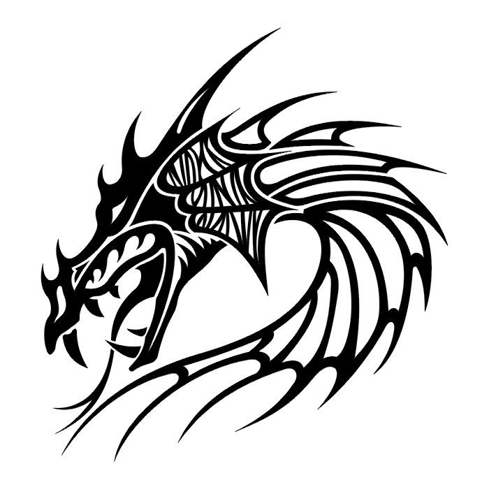 700x700 29 Best Tribal Dragon Tattoo Drawings Images Art