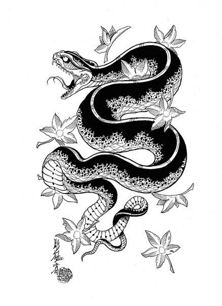 438x604 57 Best Snakes Images Cool Tattoos, Glitter Tattoos