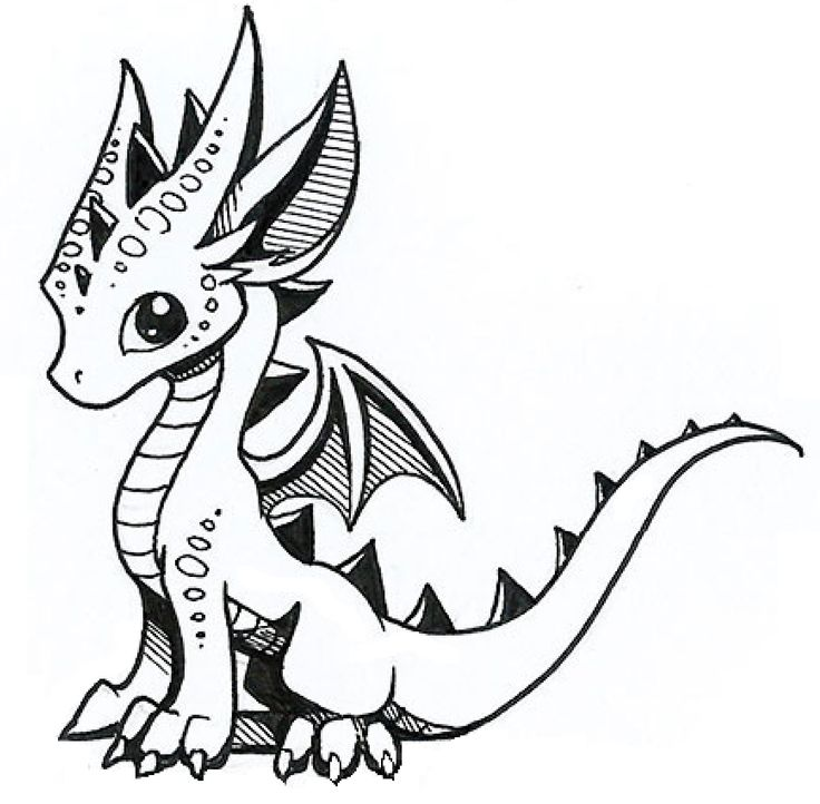 736x722 Drawn Water Dragon Adorable