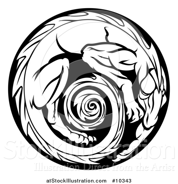 600x620 Vector Illustration Of A Black And White Curled Up Dragon