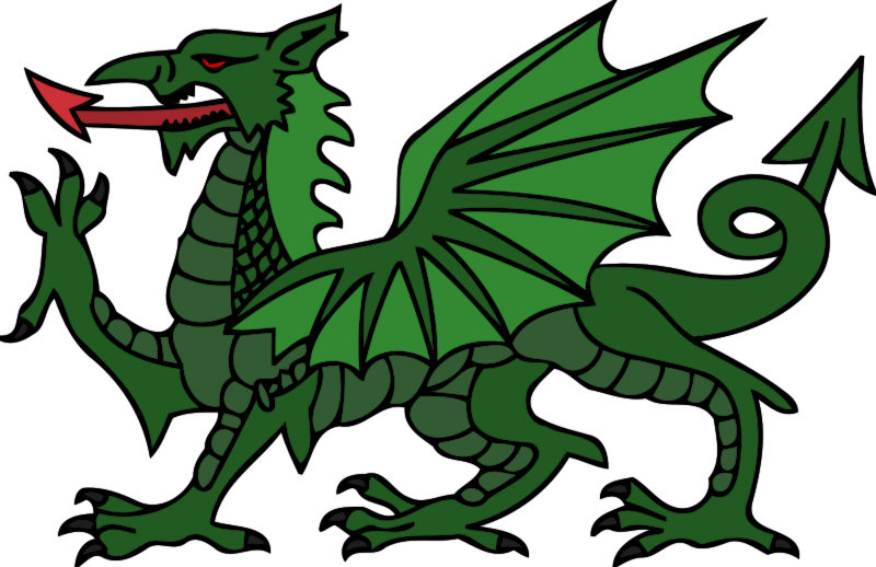 800x518 Dragon free to use clip art