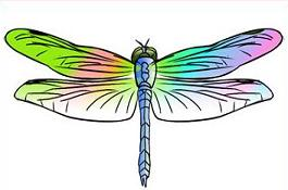 265x175 Free Dragonfly Clipart