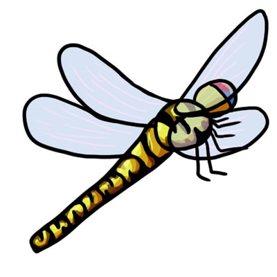 400x400 Free Dragonfly Clip Art 8