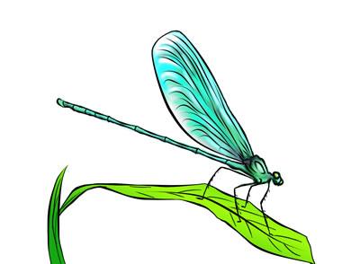 400x294 50 Free Dragonfly Clip Art 2