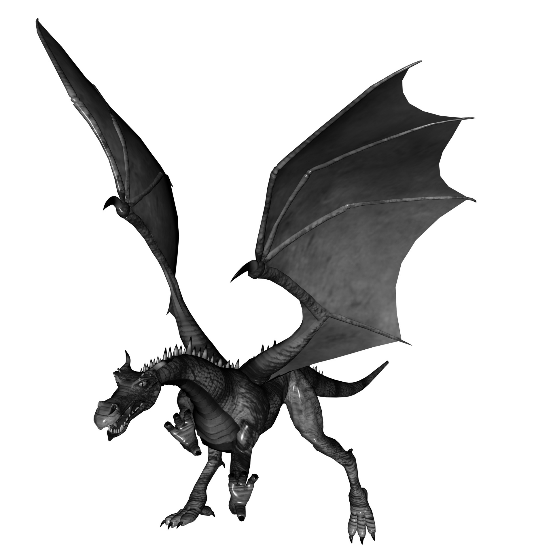 1920x1920 Dragon Pictures Black And White