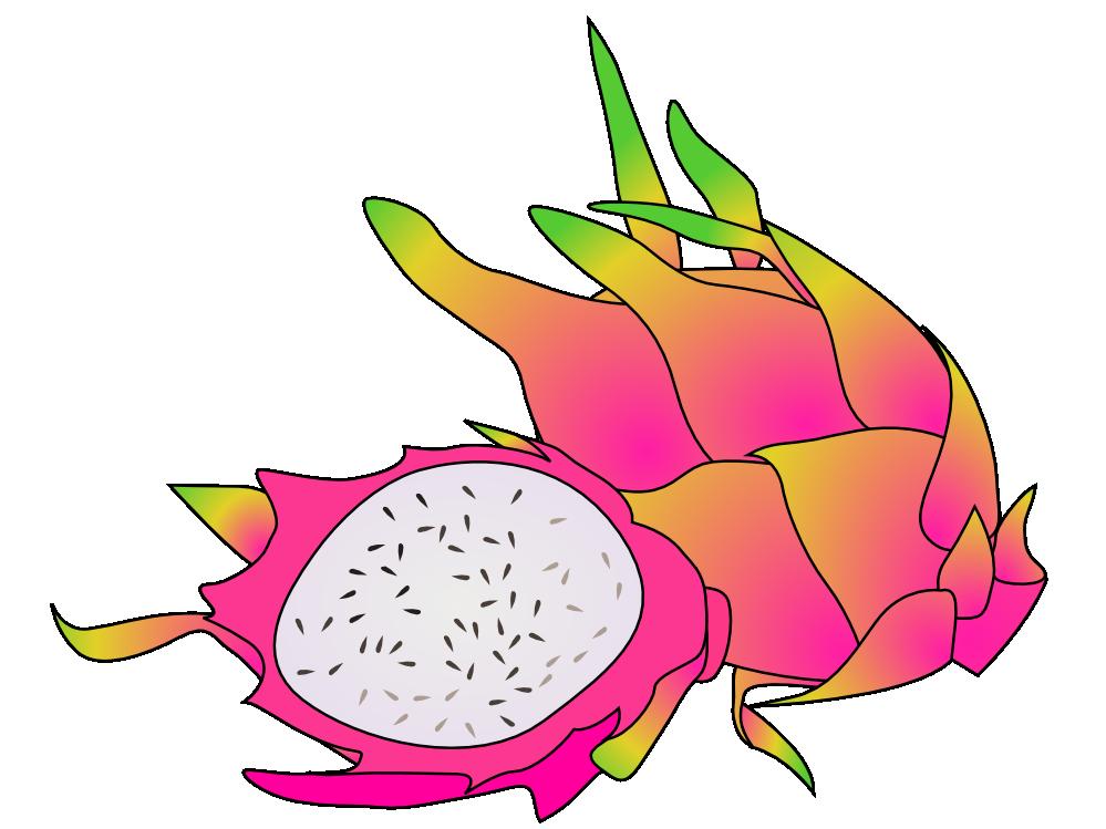 999x749 Free Dragon Fruit Clip Art