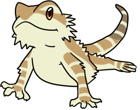 569x447 Bearded Dragon Clip Art