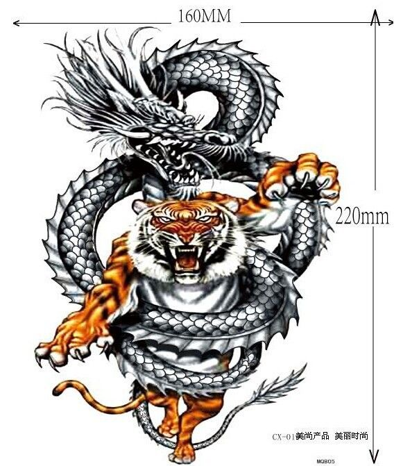 568x671 29 best 3d Dragon Tattoo Biting Arm Of images Kite