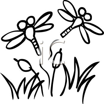 350x348 Dragonfly Clipart Coloring Page