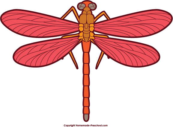 577x425 Free Dragonfly Clipart