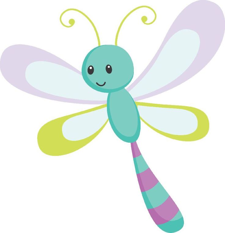 736x760 Dragonfly Clipart Biology