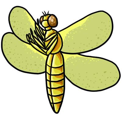 400x400 Free Dragonfly Clip Art 7