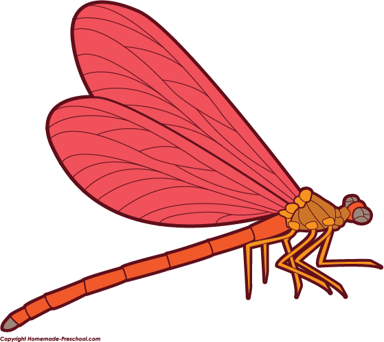 559x499 Free Dragonfly Clipart 4