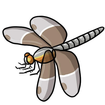 Dragonfly Images Free