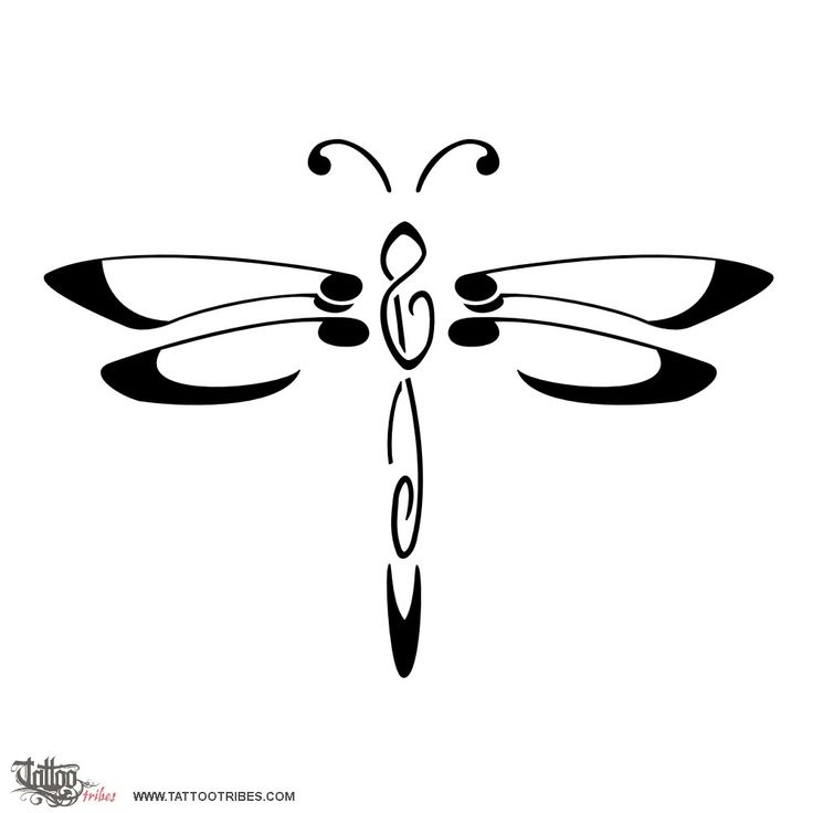 Dragonfly Outlines