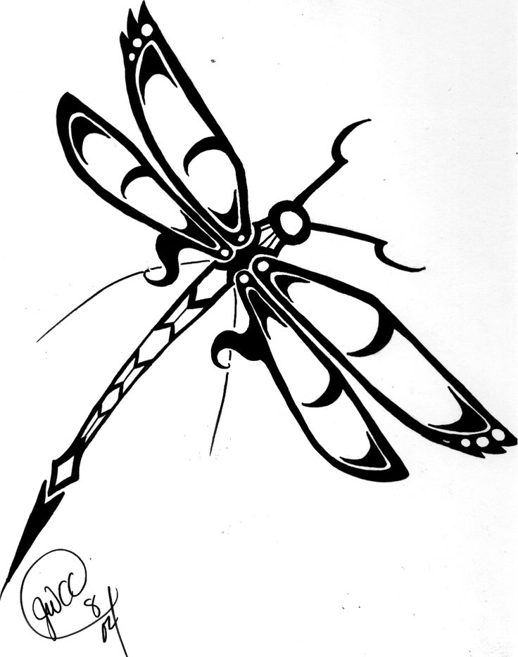 Dragonfly Outlines Free Download Best Dragonfly Outlines On