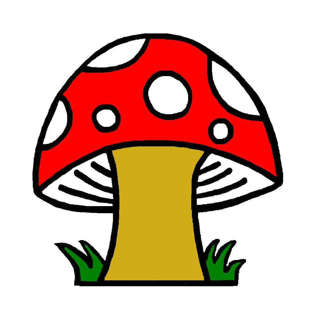 1005x1005 Best Cartoon Clipart Mushroom Clip Art Drawing