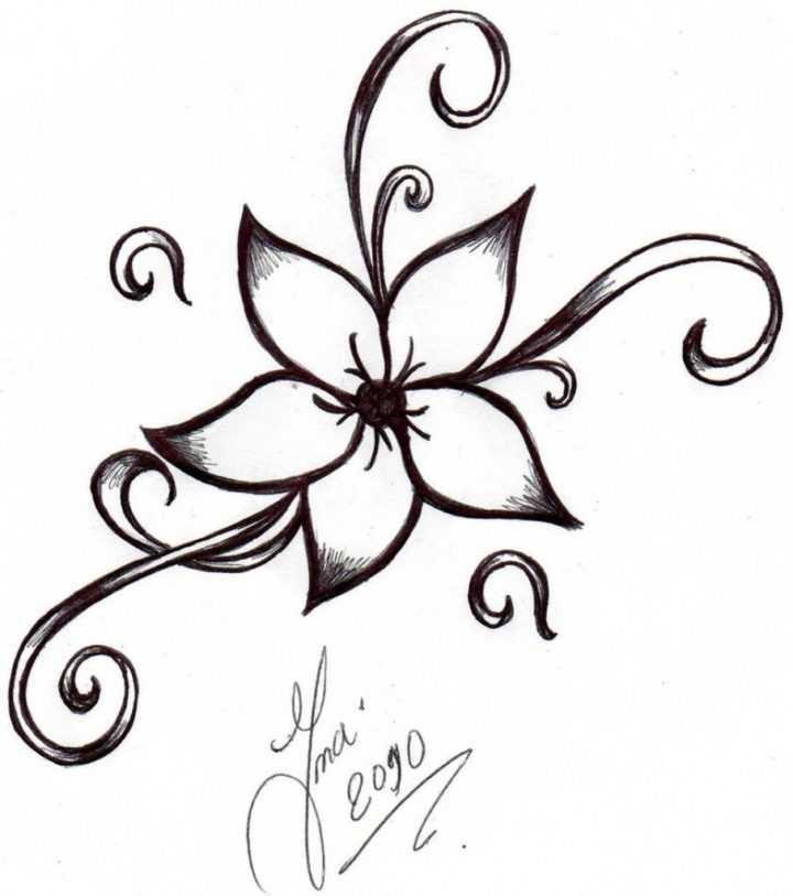 720x813 Drawings Flowers