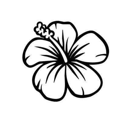 431x399 Best Hawaiian Flower Drawing Ideas Hibiscus