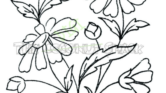 570x320 Bunch Of Flowers Drawing Bunch Of Flowers Drawing