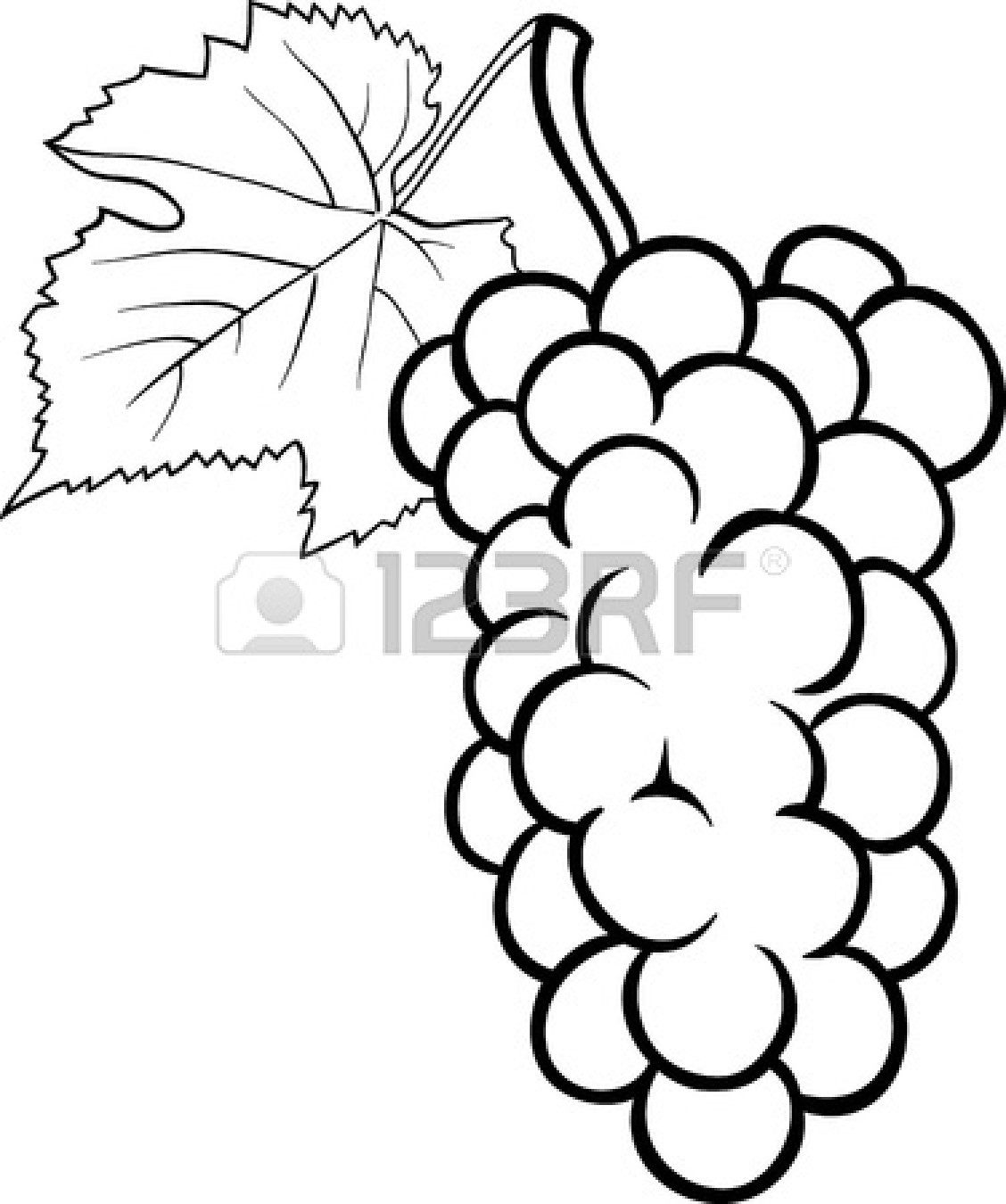 1128x1350 Fruits Amp Vegetables Clipart Black And White