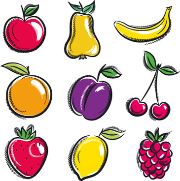 365x368 Vector Fruits Vegetables Drawing Free Vector Download (91,342 Free