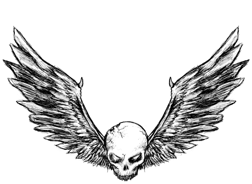 1006x734 Fallen Angel Clipart Angel Wing