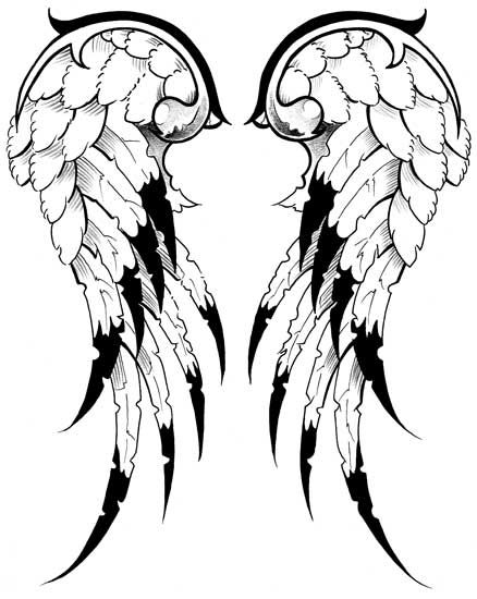 438x550 19 Best Wings Reference Images Drawings, Black
