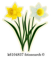 180x195 Daffodil Clipart And Stock Illustrations. 682 Daffodil Vector Eps