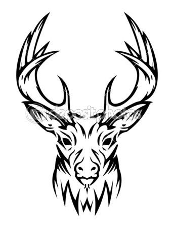344x449 Best Deer Skull Drawing Ideas Deer Skulls