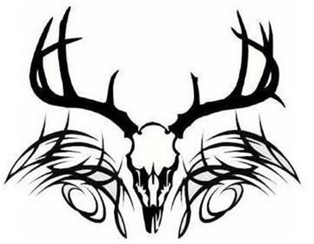 644x500 Graphics For Tribal Elk Skull Graphics