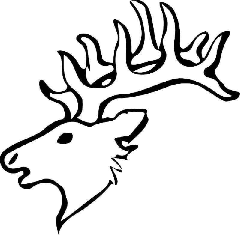 800x783 Head, Silhouette, Face, Skull, Cartoon, Deer, Heads