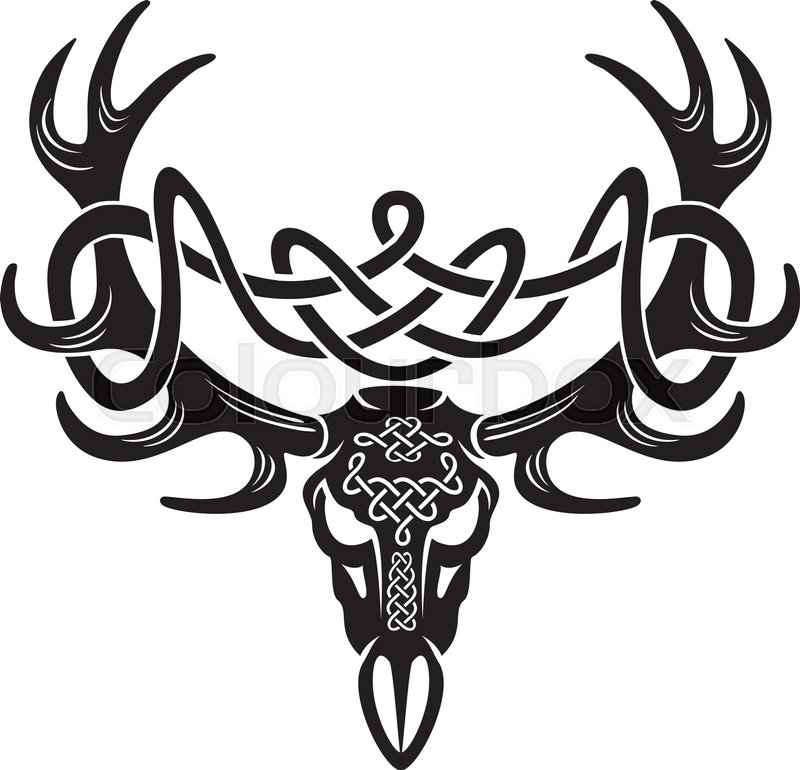 800x770 Celtic Deer Skull Stock Vector Colourbox