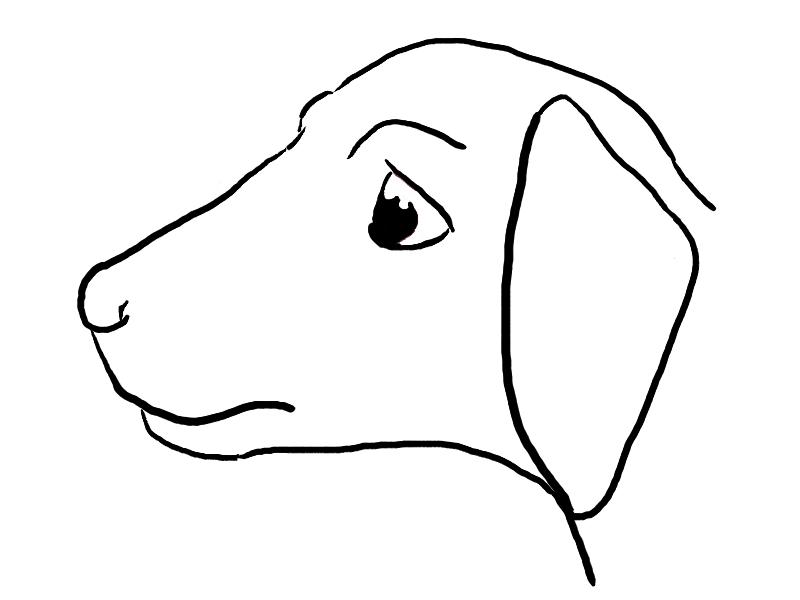 800x600 Pet Dog Line Drawing By Kuritsutei