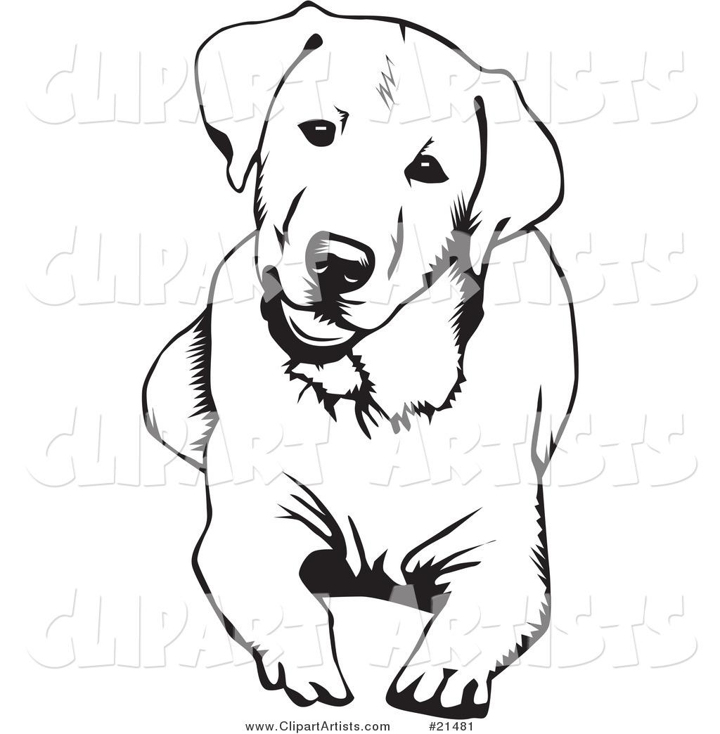 1024x1044 Pin By Gyna Devoyault On Tatouage Labradors