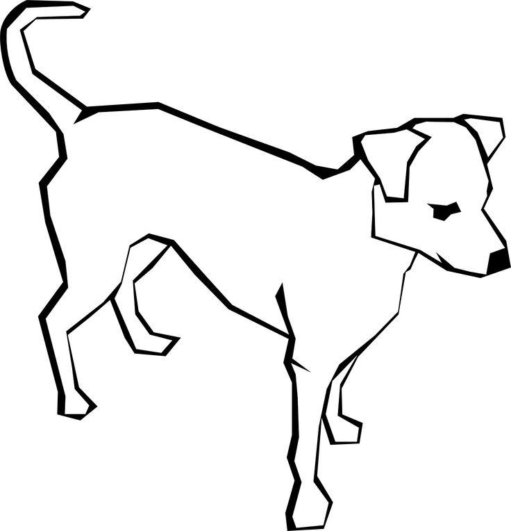 736x764 66 Best Dog Images