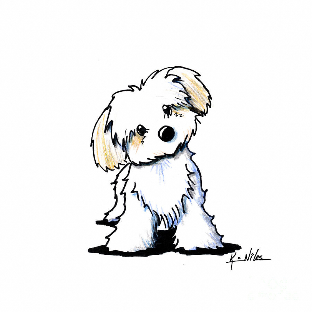 1024x1024 Cartoon Drawings Dogs How To Draw A Simple Cartoon Dog 11 Steps