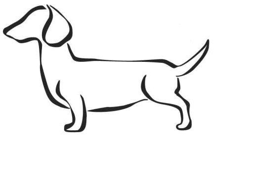 512x384 The Best Dachshund Drawing Ideas Daschund