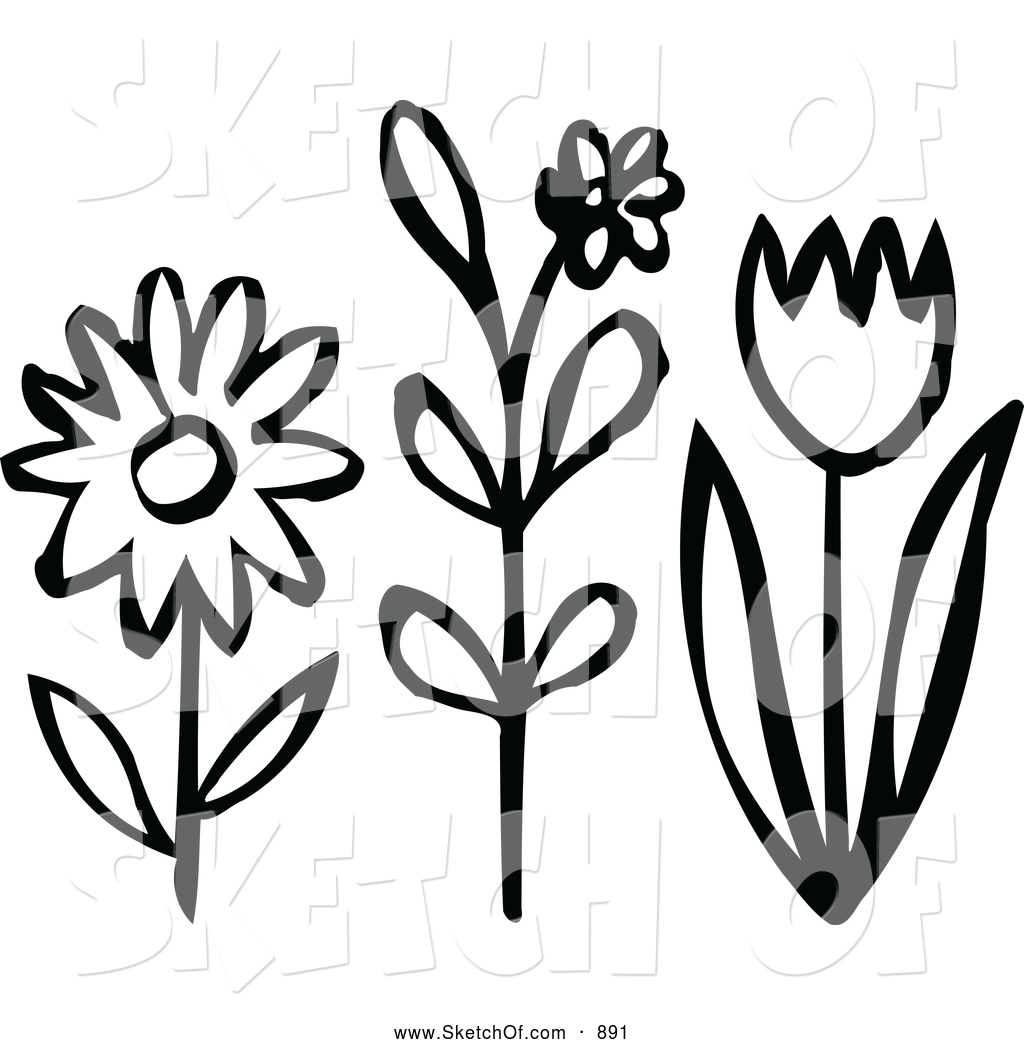 Drawings of flowers in black and white free download best drawings 1024x1044 drawing of black and white flowers by nl shop mightylinksfo