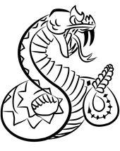 170x213 Rattlesnake Drawing