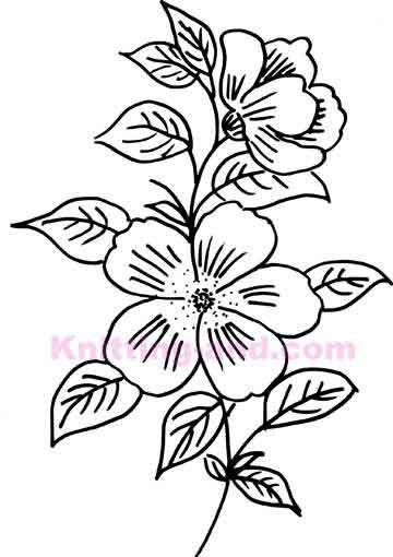 Drawn flowers free download best drawn flowers on clipartmag 360x510 1028 best patterns images search diy artwork and altavistaventures Images