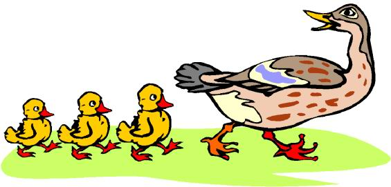 565x271 Free Clip Art Duck Clipart Image