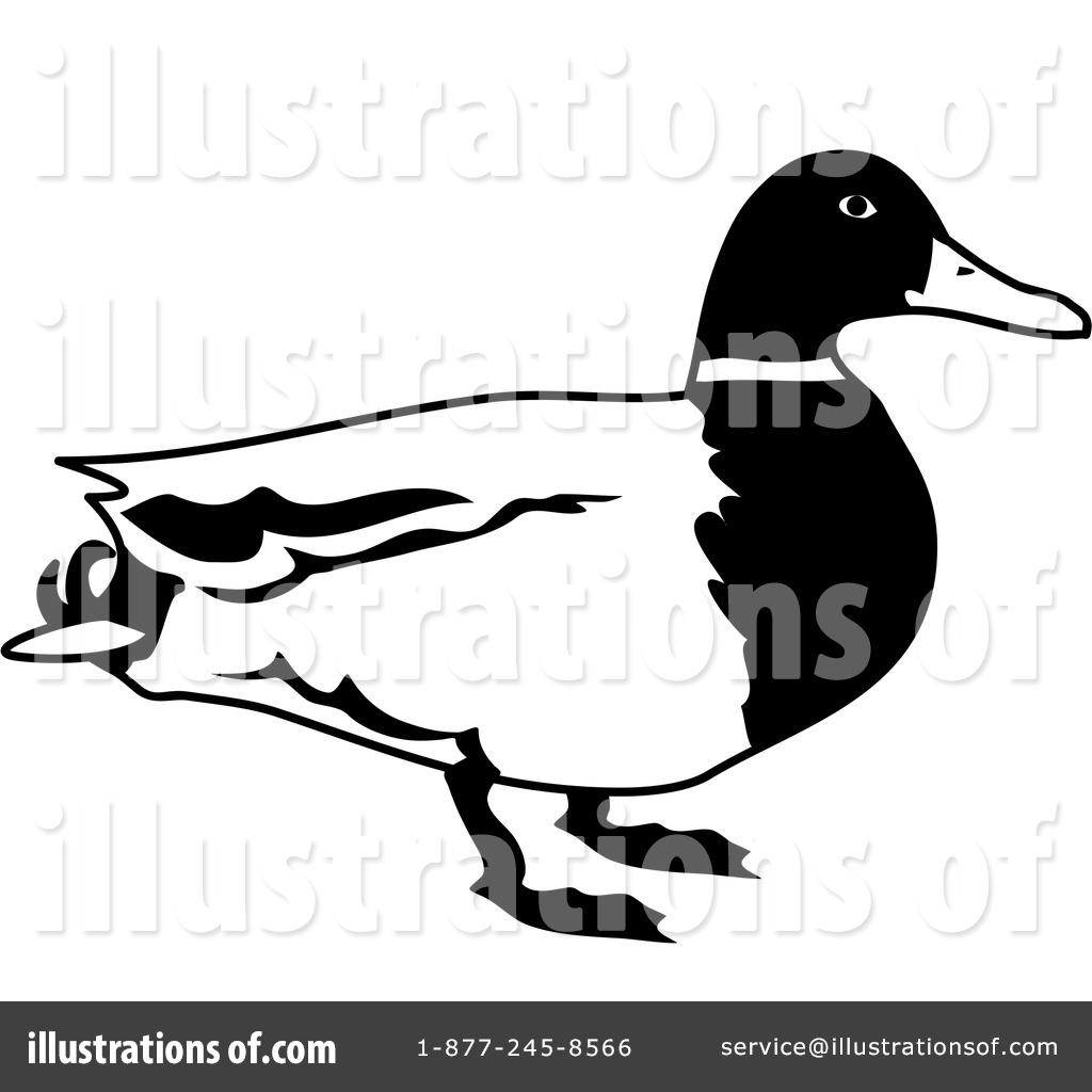 1024x1024 Duck Clipart
