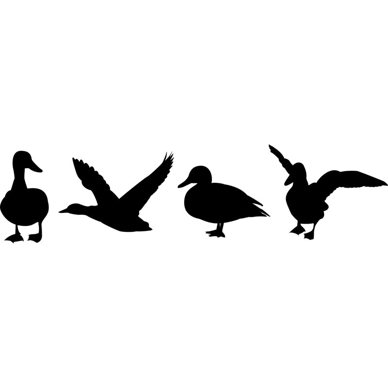 800x800 Duck Silhouette Clip Art Many Interesting Cliparts