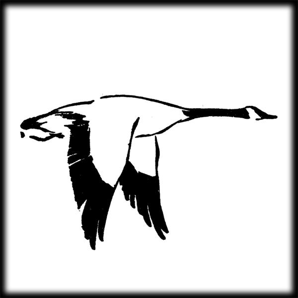 600x600 Duck Hunting Clipart Tumundografico 3