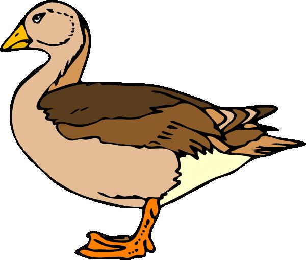 600x509 Duck Clip Art