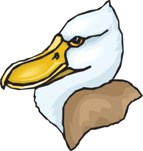 Duck Clipart Png