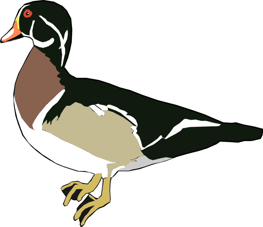 900x777 Ducks Clip Art
