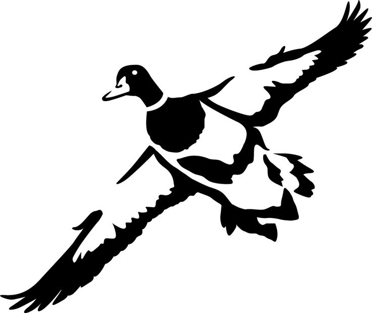736x619 Best Duck Silhouette Ideas Hunting Signs, Man